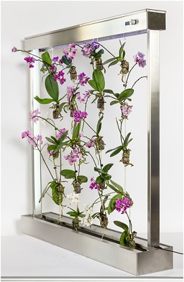 Abbildung 3 Entwicklung einer vertikalen blühenden Orchideen-Landschaft aus deutsch-deutscher oder hexischer Teamarbeit. BOHO-Garten 1x1m mit automatischer Bewässerung und Beleuchtung und BOHO-Aahhh-Orchideen.