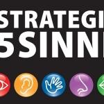 cover die strategie der 5 Sinne