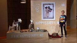 HappyStaffy Aleksandra Bettin Foto: VOX/Sony